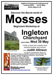 ingleton-mosses-29-may